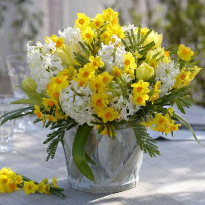 Fragrant Spring Blooms Collection - Mixed Bulbs