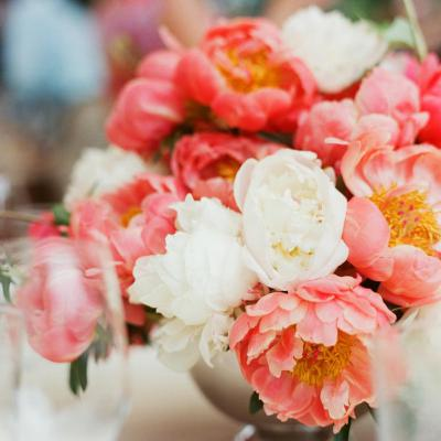 Peony Bulbs - Coral Bouquet Mix